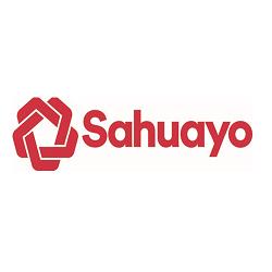 sahuayo-log