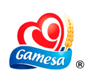 Grupo Gamesa S. de R.L. de C.V.